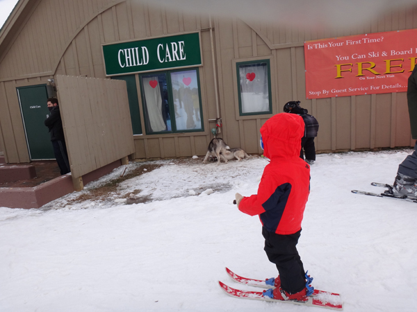 Two years and 9 month old, Nathan Oki first time on skis at Whitetail Ski Area, PA.  Nathan is using his mother's skis and boots purchased at