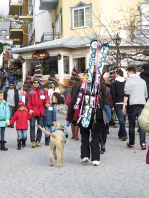 A skier and his dog pack skis through the Tremblant Village